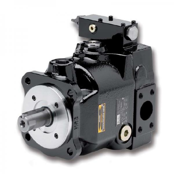 PAKER F12-090-MS-SV-T-000 Piston Pump #1 image