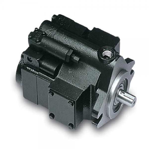 PAKER YB1-10 Piston Pump #2 image